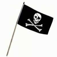 Drapeau PIRATE + hampe