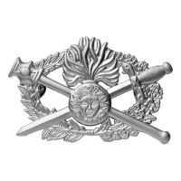Insigne métal brevet OPJ